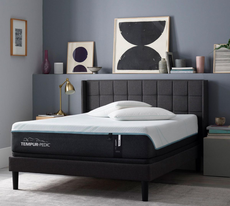 ProAdapt Medium Queen Mattress