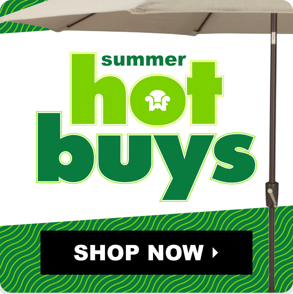 Summer Hot Buys